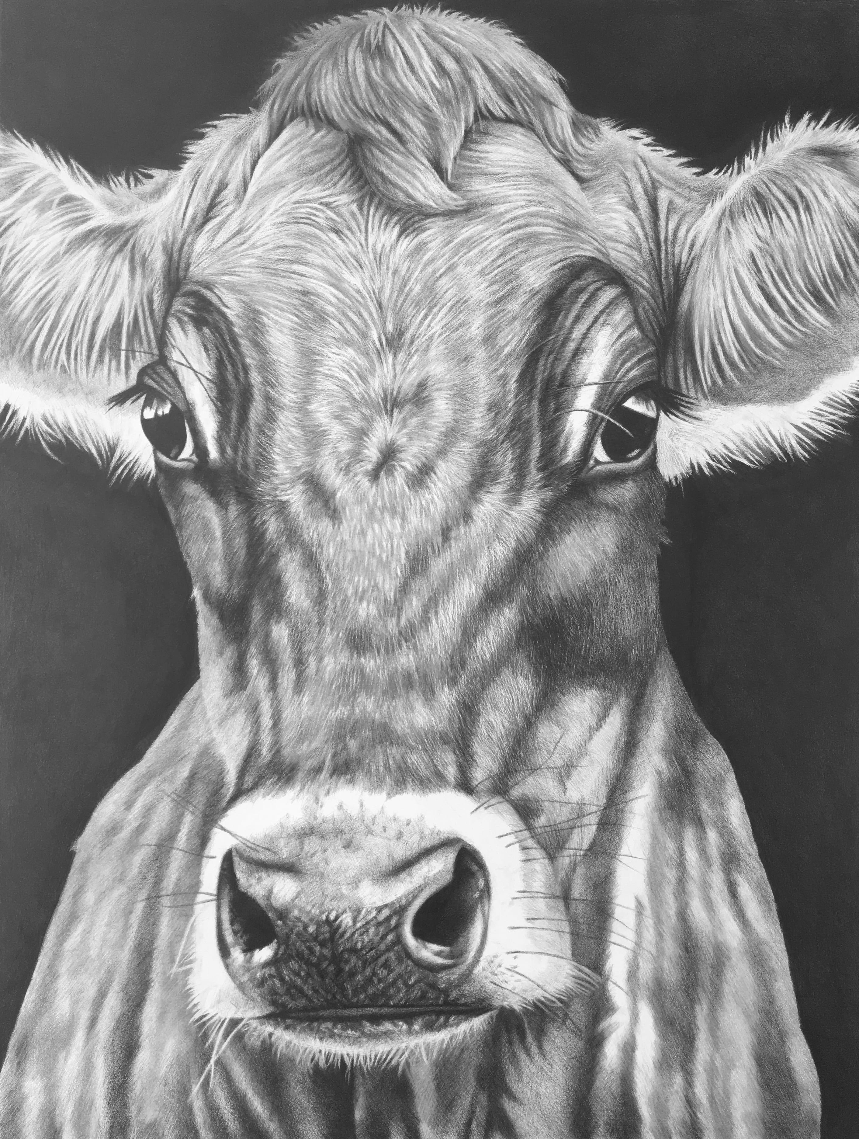 Wz 1103 Frieda--- Bleistiftzeichnung auf Lwd | 145 x 110 cm, 2019